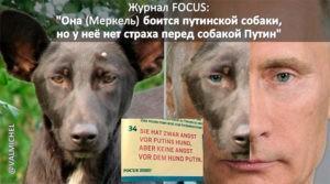 Путин не собака, собаки не бывают садистами