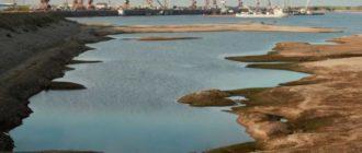 Крупнейшая река Сибири обмелела уже на 5 метров из-за вырубки Китаем лесов Сибири