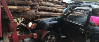 В США водитель джипа остался живым после того как его авто пронзили более 30 бревен! (фото)