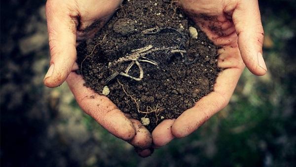 Хто продає Землю, той продає свою Душу і майбутнє своїх Дітей! (Відео)